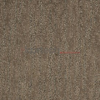 _spontini-New-серо-коричневый-040